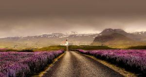 A Rookie Traveler Mishap- A French Man's Journey to Iceland schema