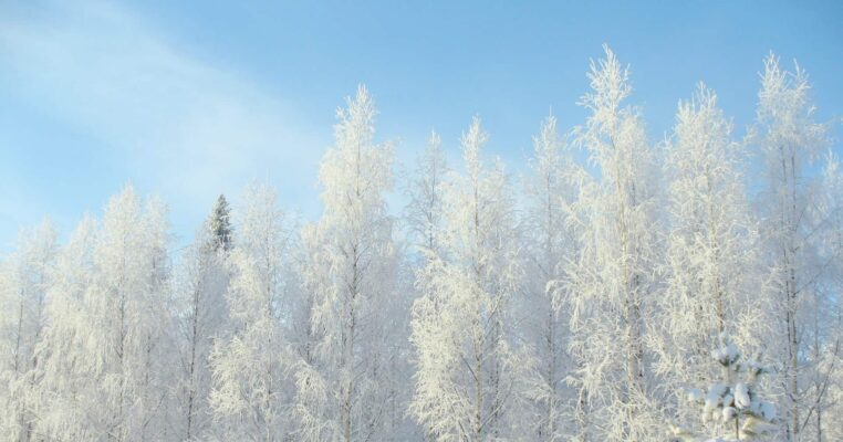 20 Mesmerizing Winter Wonderland Photos of Finland FEATURED