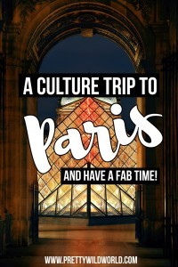 Paris is a romantic city popular amongst tourists, here are some of the things to do in Paris to booze up your culture knowledge!