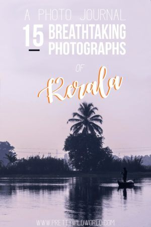 Breathtaking Photos of Kerala India   Travel to India   Travel Photography   Canon G7x   Places to see in India   Things to do in Kerala   Beautiful places in the world   Thekaddy   Kerala Backwaters   Periyer Tiger Reserve   Fort Kochin   Kalypso Adventures   Munnar Kerala India   Alleppey Backwaters   Trivandrum Kerala