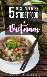 Amazing Street Food in Vietnam | Check out these street foods you must not miss if you visit Hoi An. Vietnam is of the best place in Asia to indulge in flavor and tickle your wanderlust!