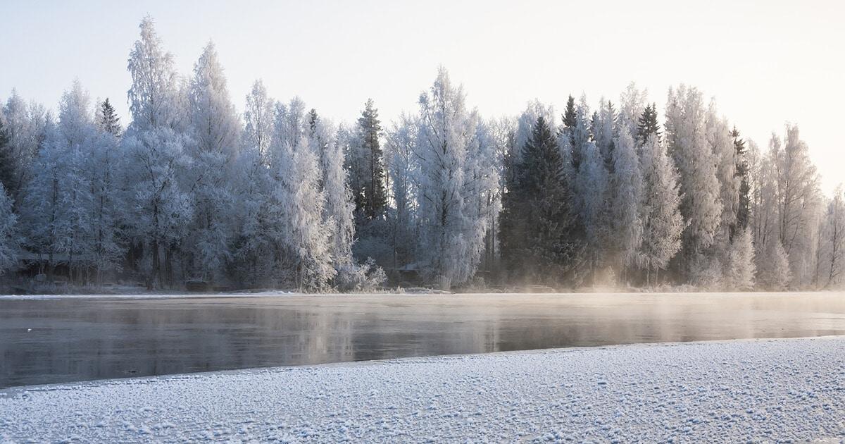 Finnish winter during dusk