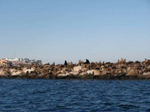 places to visit in the USA monterey bay