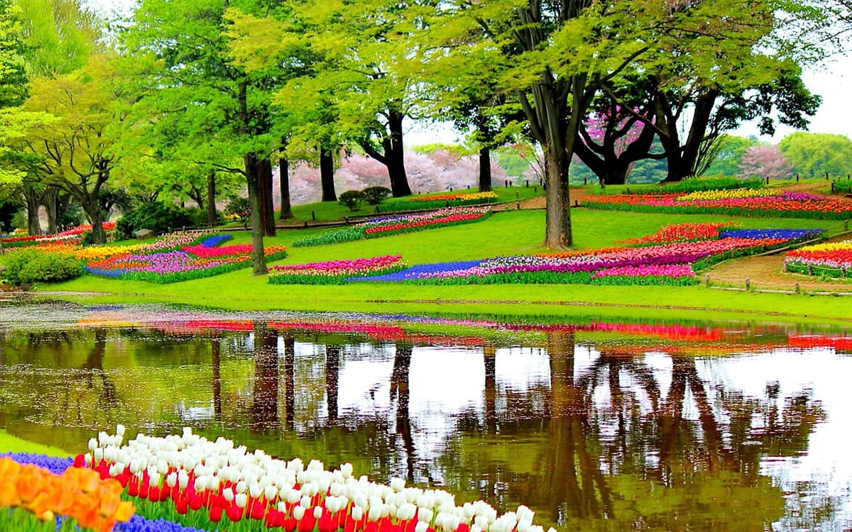 Most Colorful аnd Vibrant Trаvеl Destinations іn Europe Keukenhof Netherlands