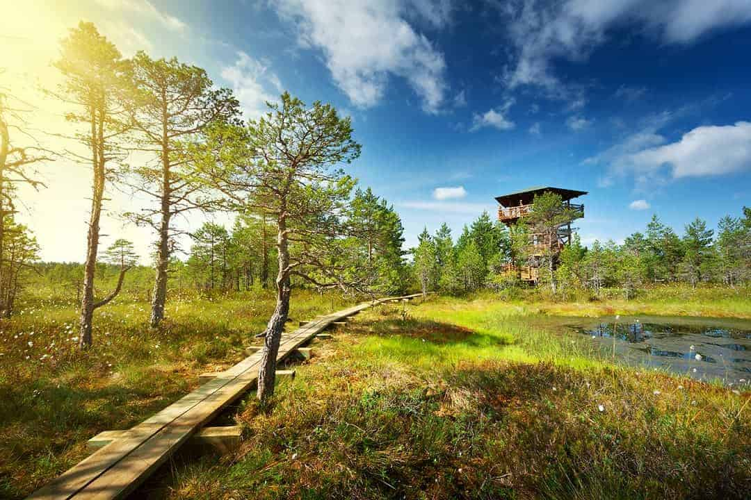 TOP PLACES TO VISIT IN ESTONIA LAHEMAA NATIONAL PARK