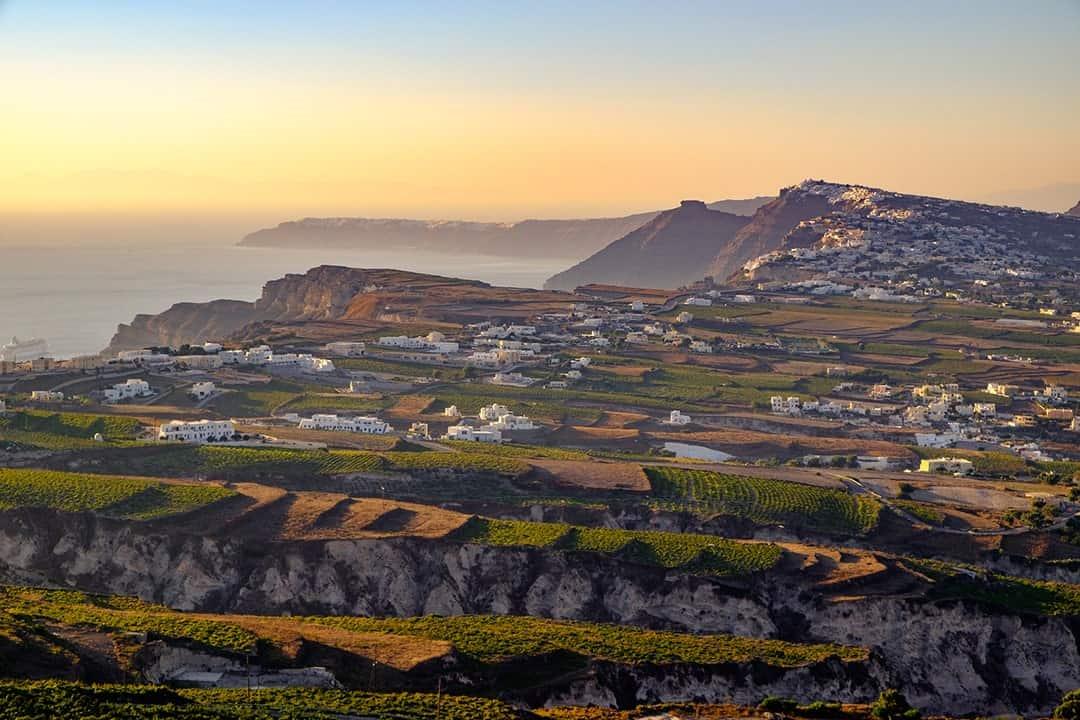Explore Santorini's Wine Culture