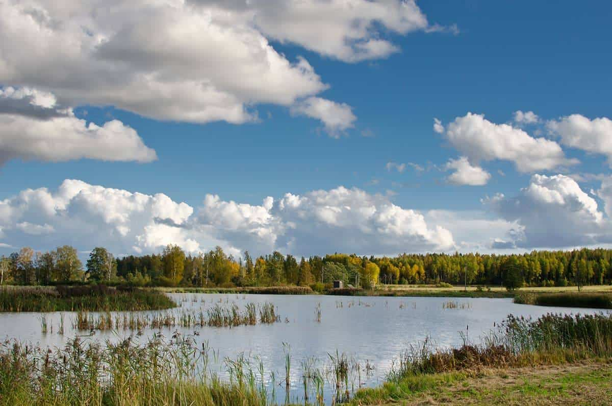 Top Day Trips from Helsinki Lake Tuusula