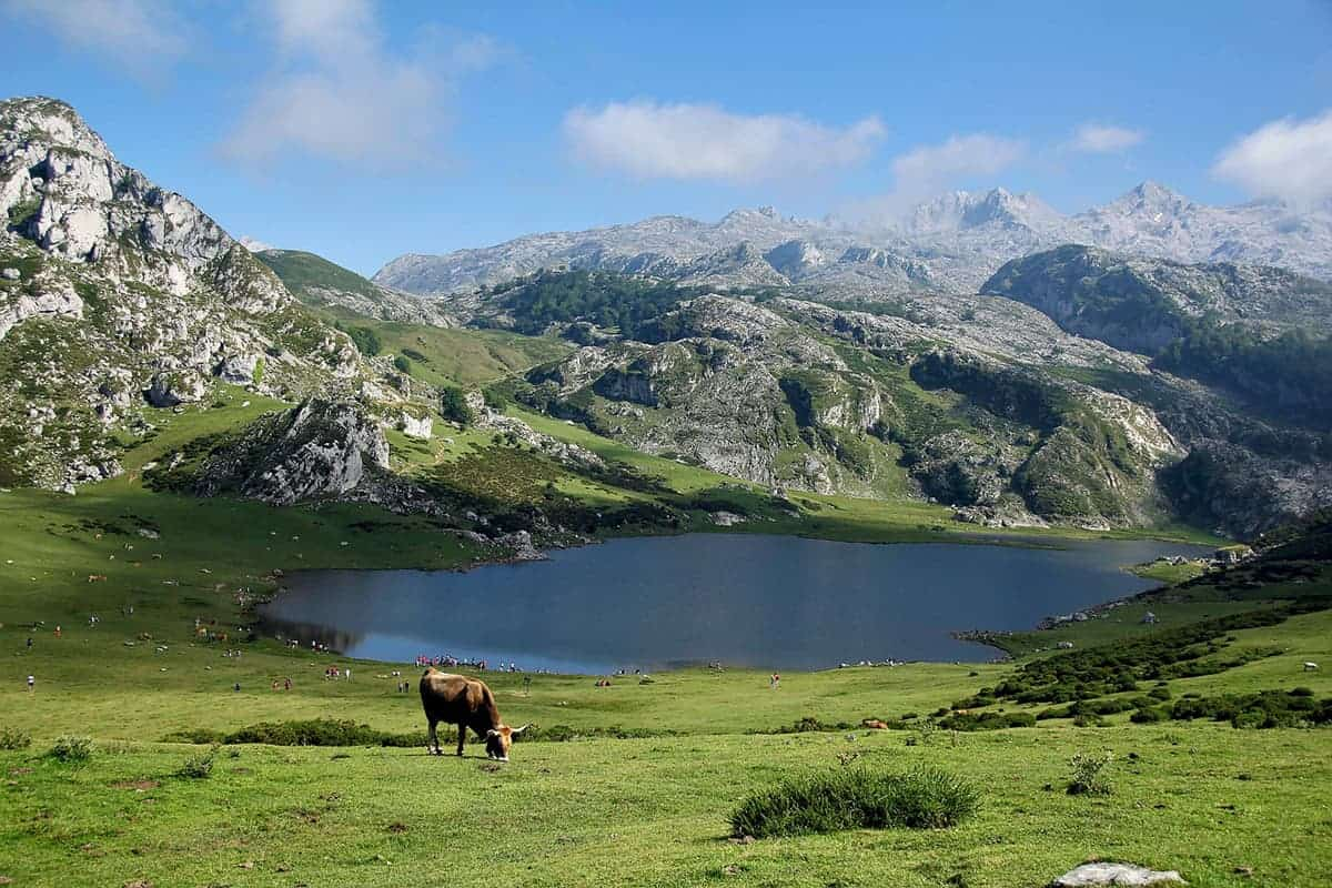 Top Places to Visit in France Pyrenees and Dordonge