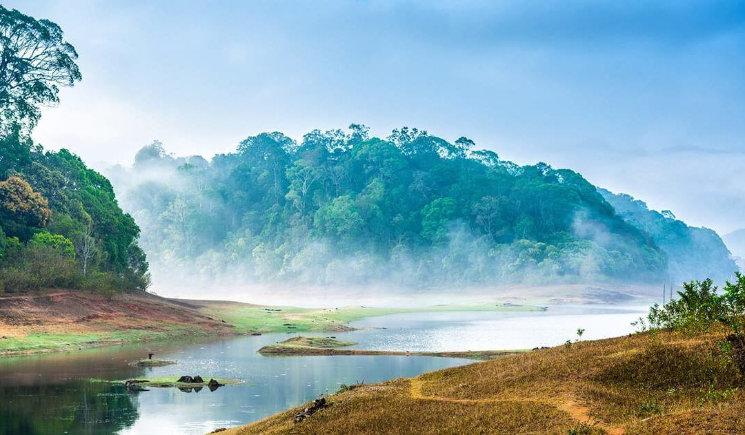 Beautiful Places to Visit in Kerala You Must Not Miss! (Travel India)