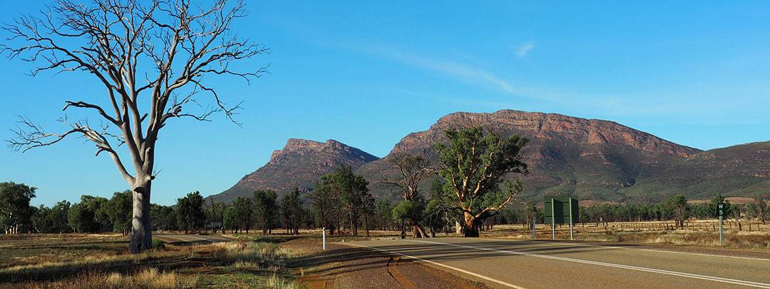 Reasons Why You Should Visit Australia Australia is a stunning country to go to on a road trip