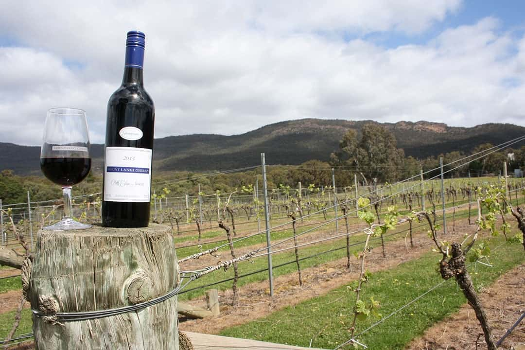 Reasons Why You Should Visit Australia Enjoy Australian wines during your visit