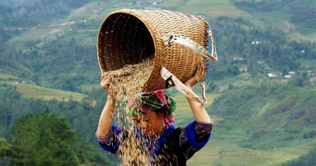 Places to Visit in Vietnam featured photo
