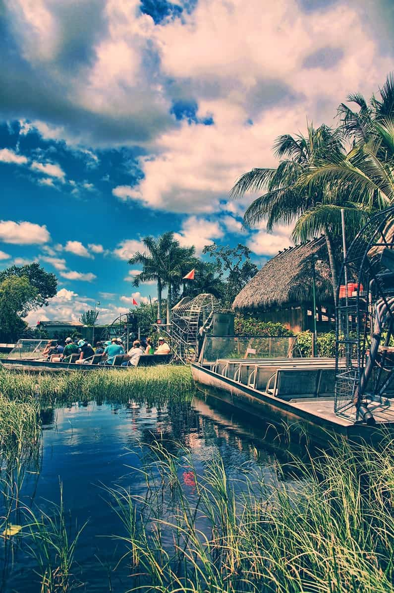 Top Places to Visit in Florida The Everglades