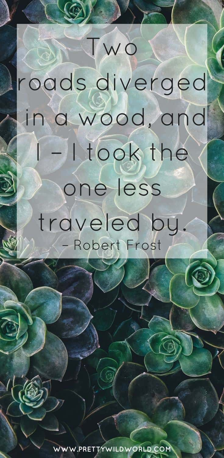 Are you interested on travel adventure quotes? In this post we have some of the best life adventure quotes to fuel your wanderlust! You'll also find adventure quotes travel, adventure quotes wanderlust, powerful travel quotes, new adventure quotes, and funny adventure quotes. Read more or pin this post for later read! #adventurequotes #adventure #travelquotes #inspirational