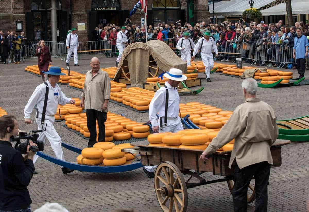top day trips from amsterdam the netherlands alkmaar cheese market