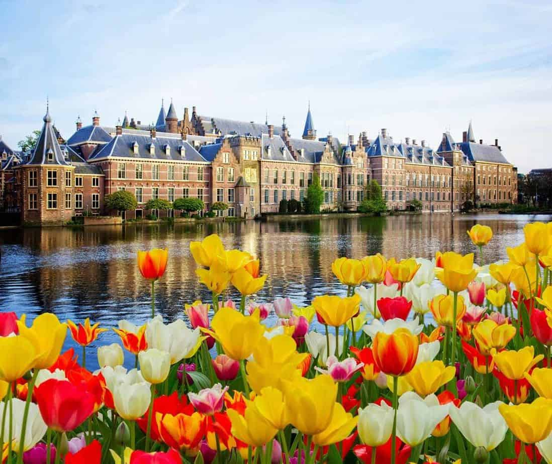 top day trips from amsterdam the netherlands den haag