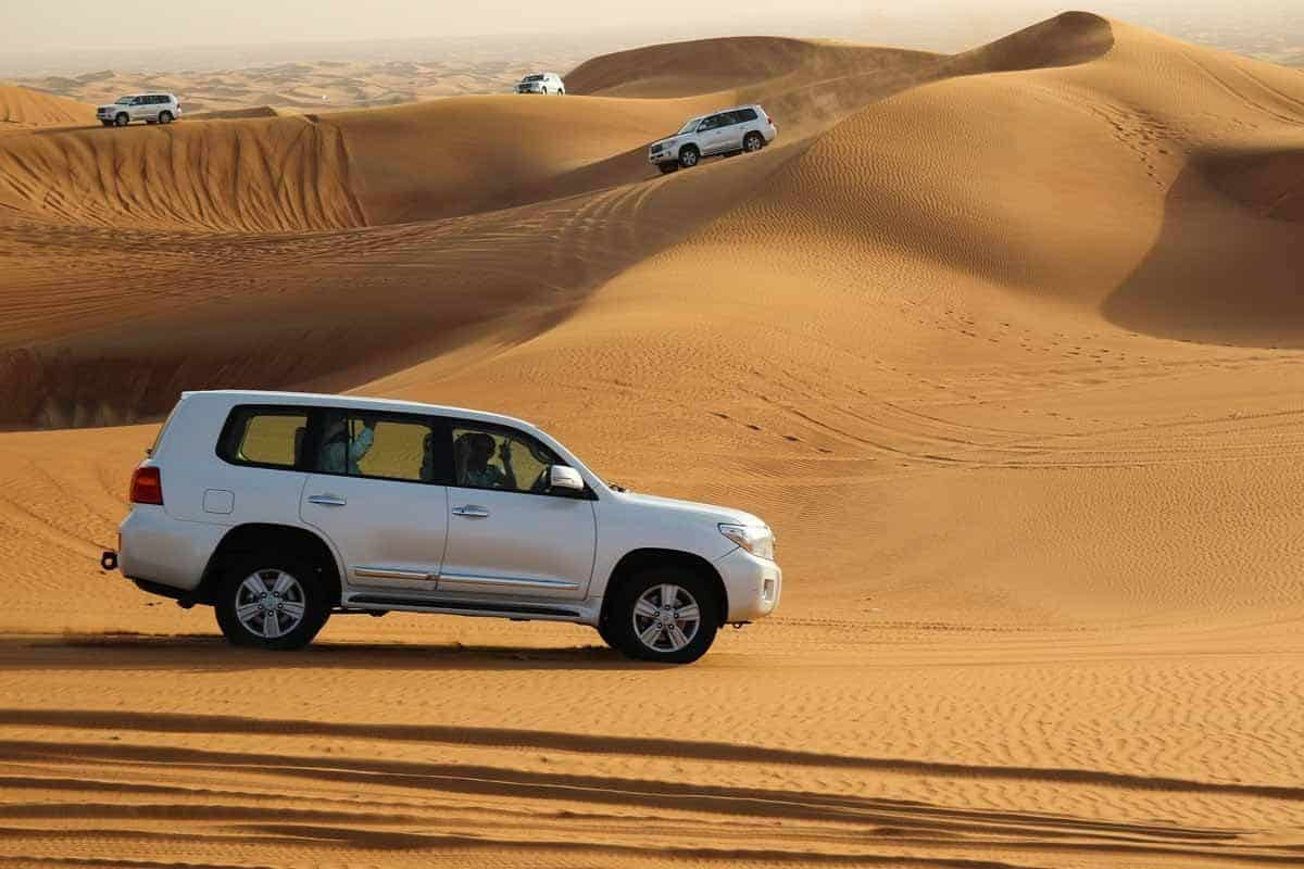 top day trips from dubai uae desert safari