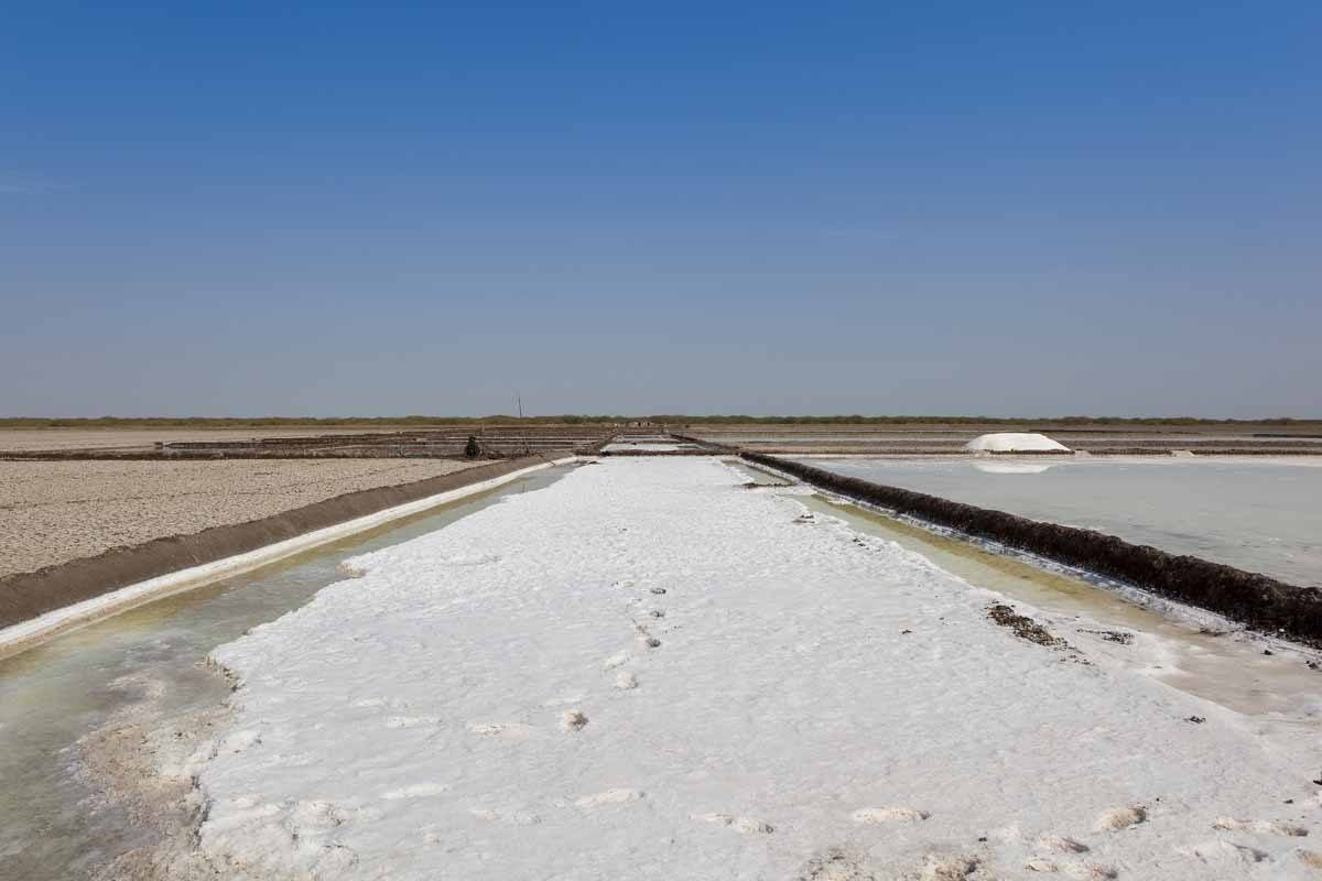 points of interest where to go and places to visit in india rann of kutch