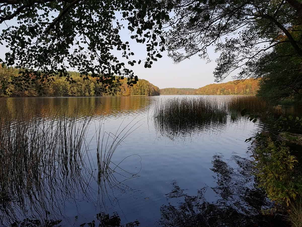top day trips from berlin germany wandlitzsee lake