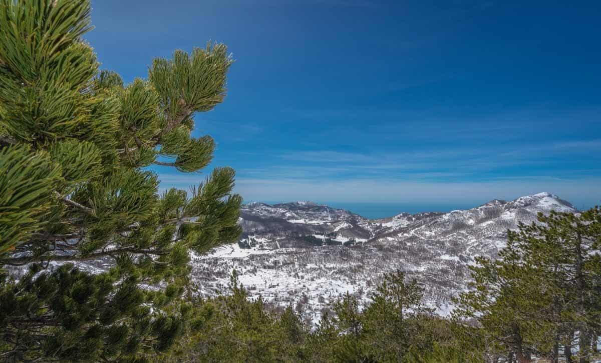 top tourist attractions in kotor montenegro mount lovcen top