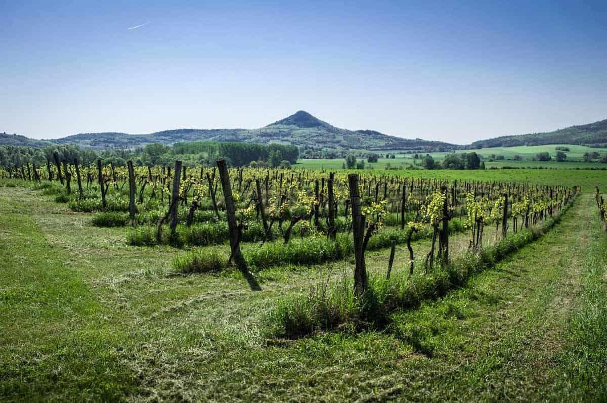 unesco world heritage sites in europe tokaj wine region of hungary