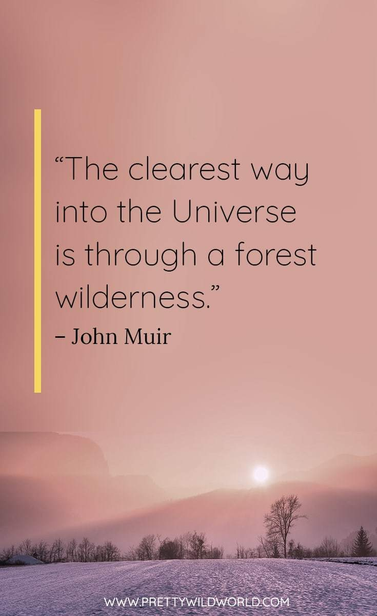 best nature quotes | nature quotes inspirational | nature quotes adventure | nature quotes beautiful | nature quotes spiritual | nature quotes thoughts | short nature quotes trees | short nature quotes beautiful | short nature quotes words | short nature quotes life | short nature quotes mottos | #naturequotes #naturemottos #quotes
