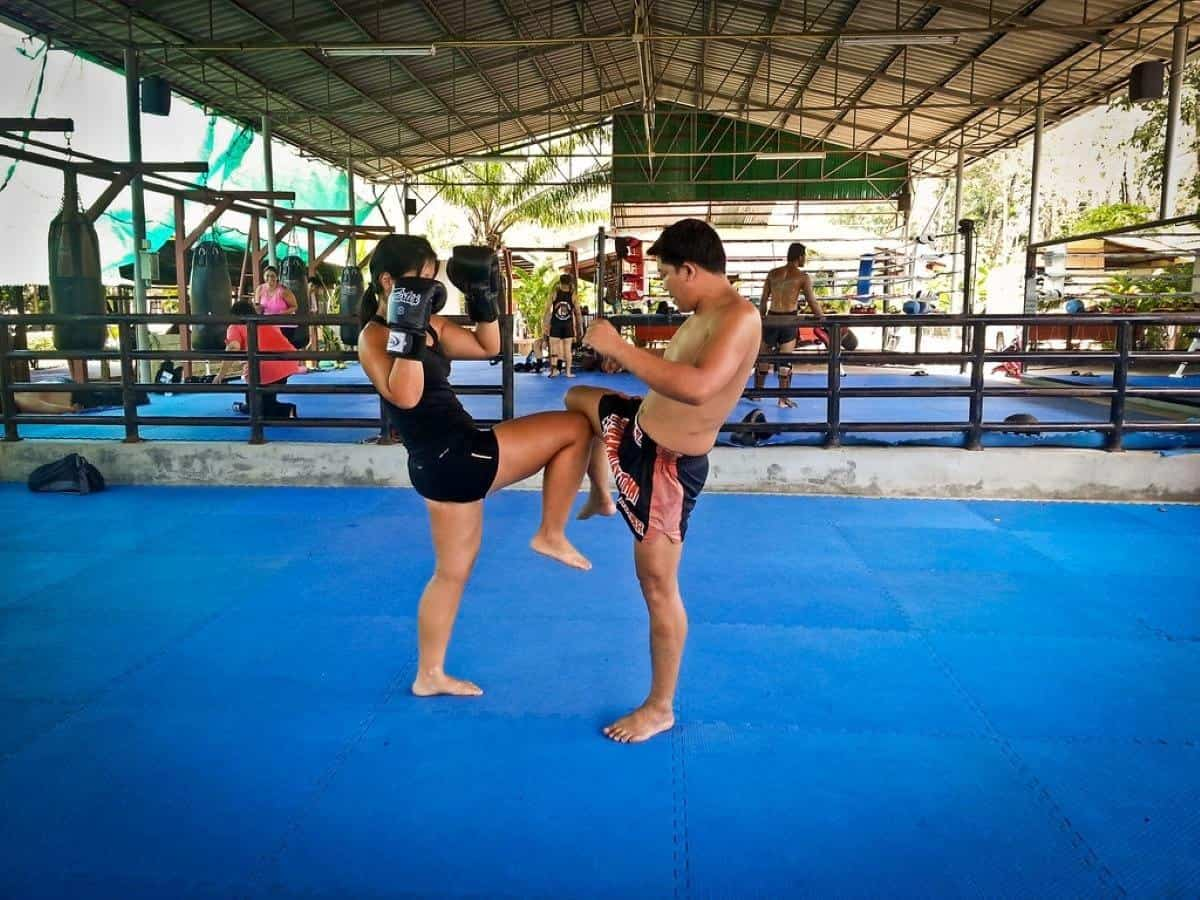 Tiger Muay Tai martial arts