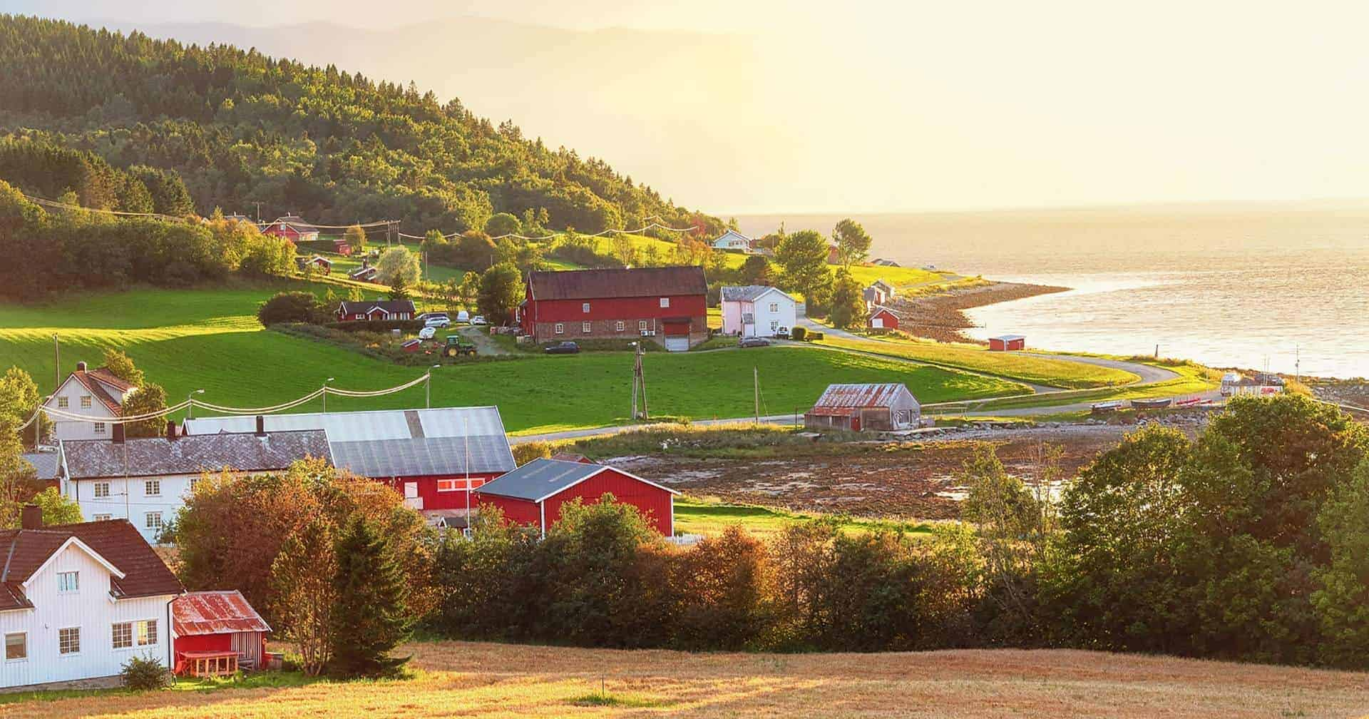 things to do in trondheim Featured