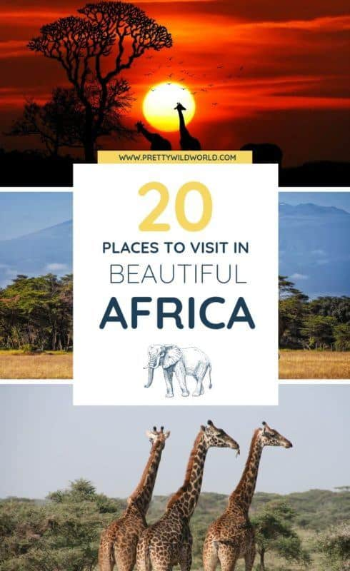 Are you looking forward to travel to Africa? Experience some of the best safari, art, architecture, culture, landscape, and authentic food from Africa. Read this post now to learn more about it or pin it for later read!