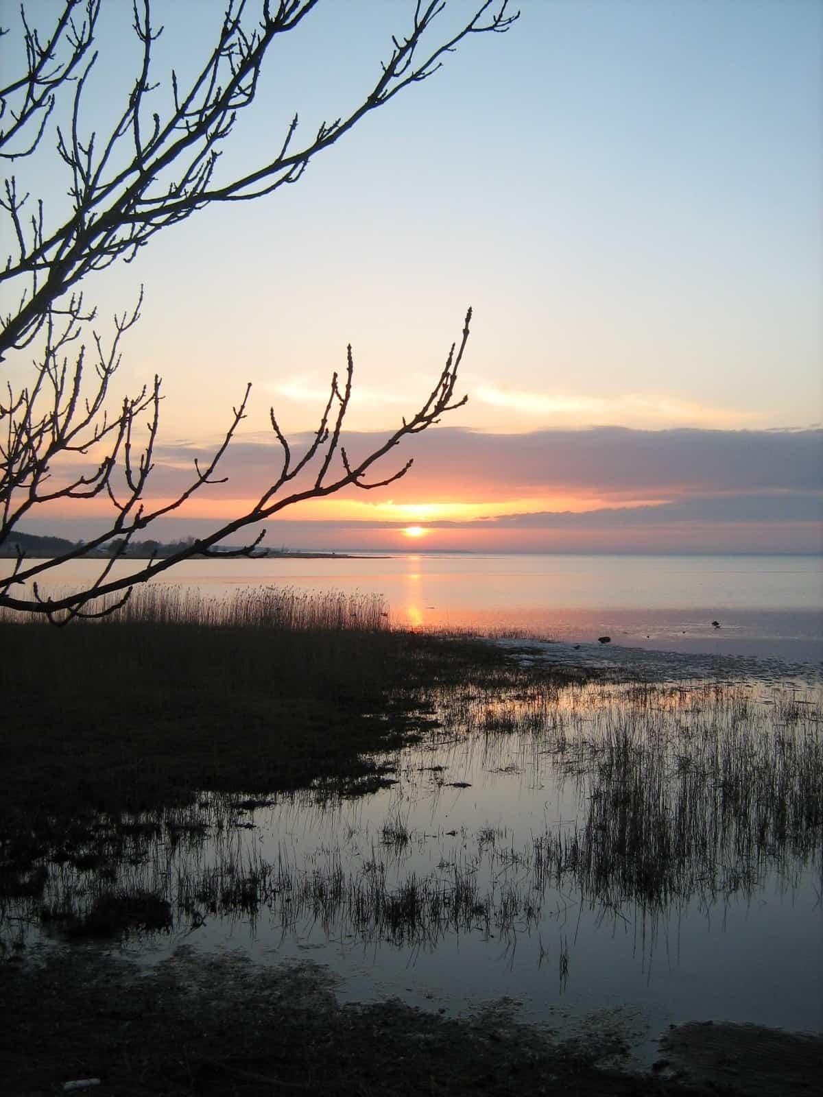 Haapsalu Bay