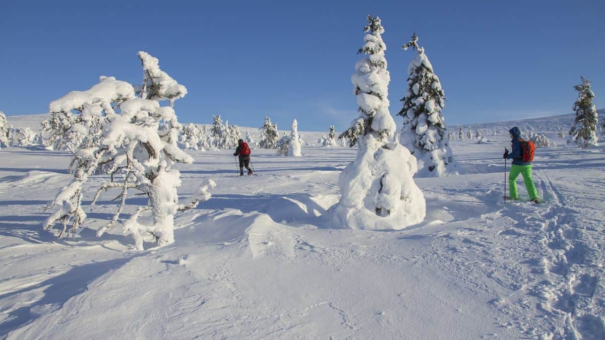 snowshoeing on the snow in lapland