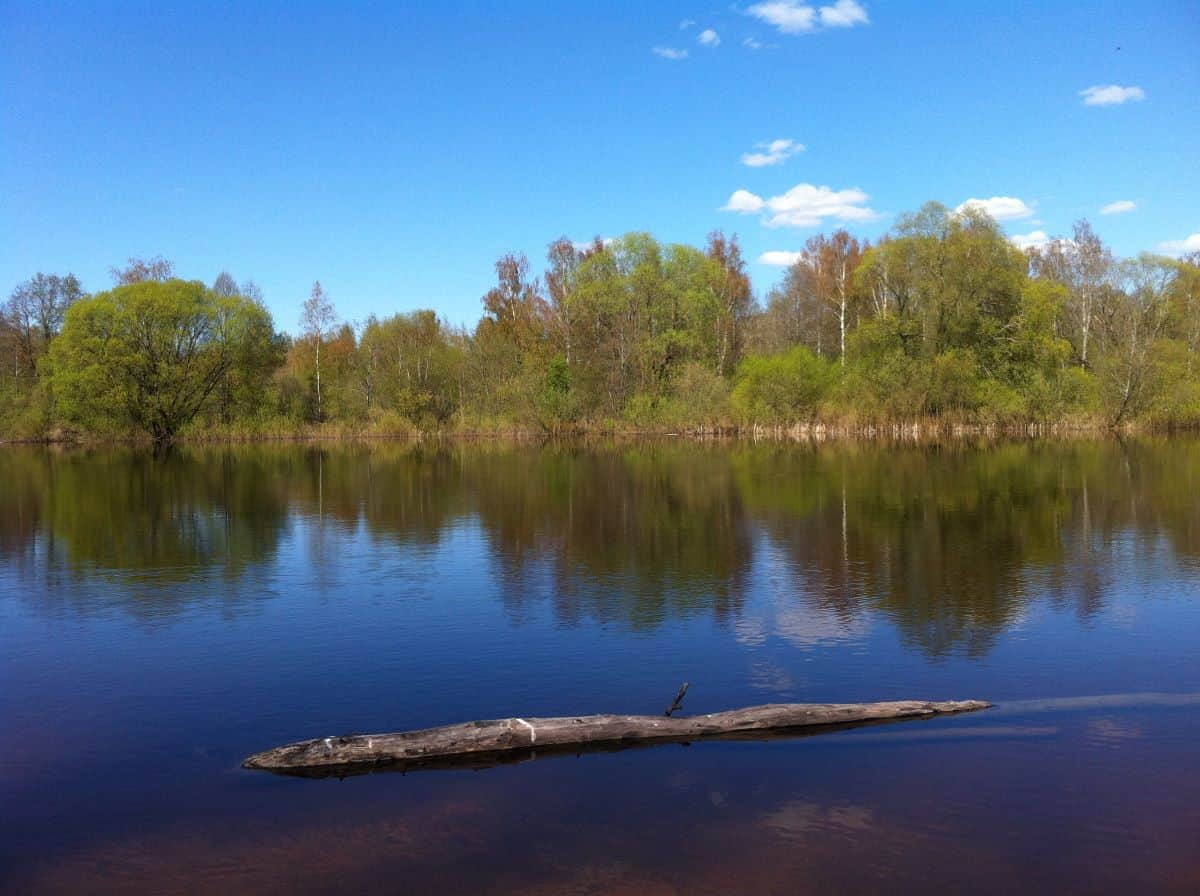 Emajogi River