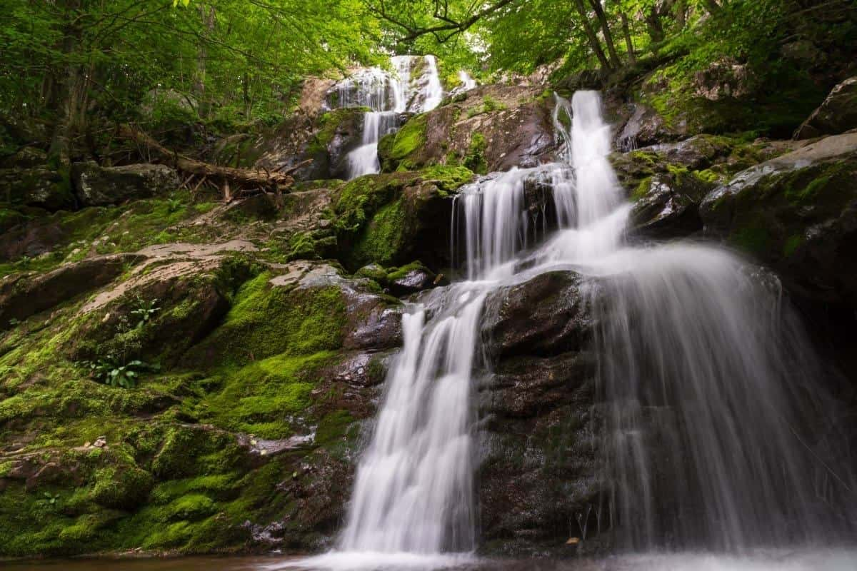 A waterfall in Shenandoah National Park Virginia