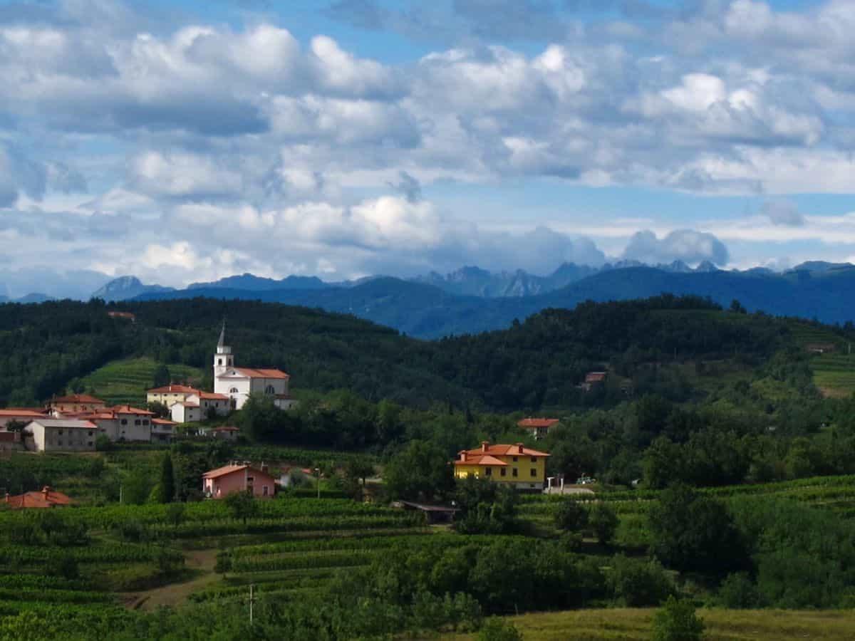 Goriška Brda Slovenia vineyards