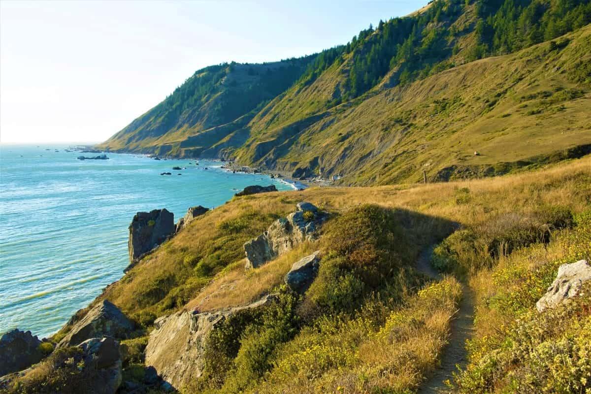 Lost Coast Trail California