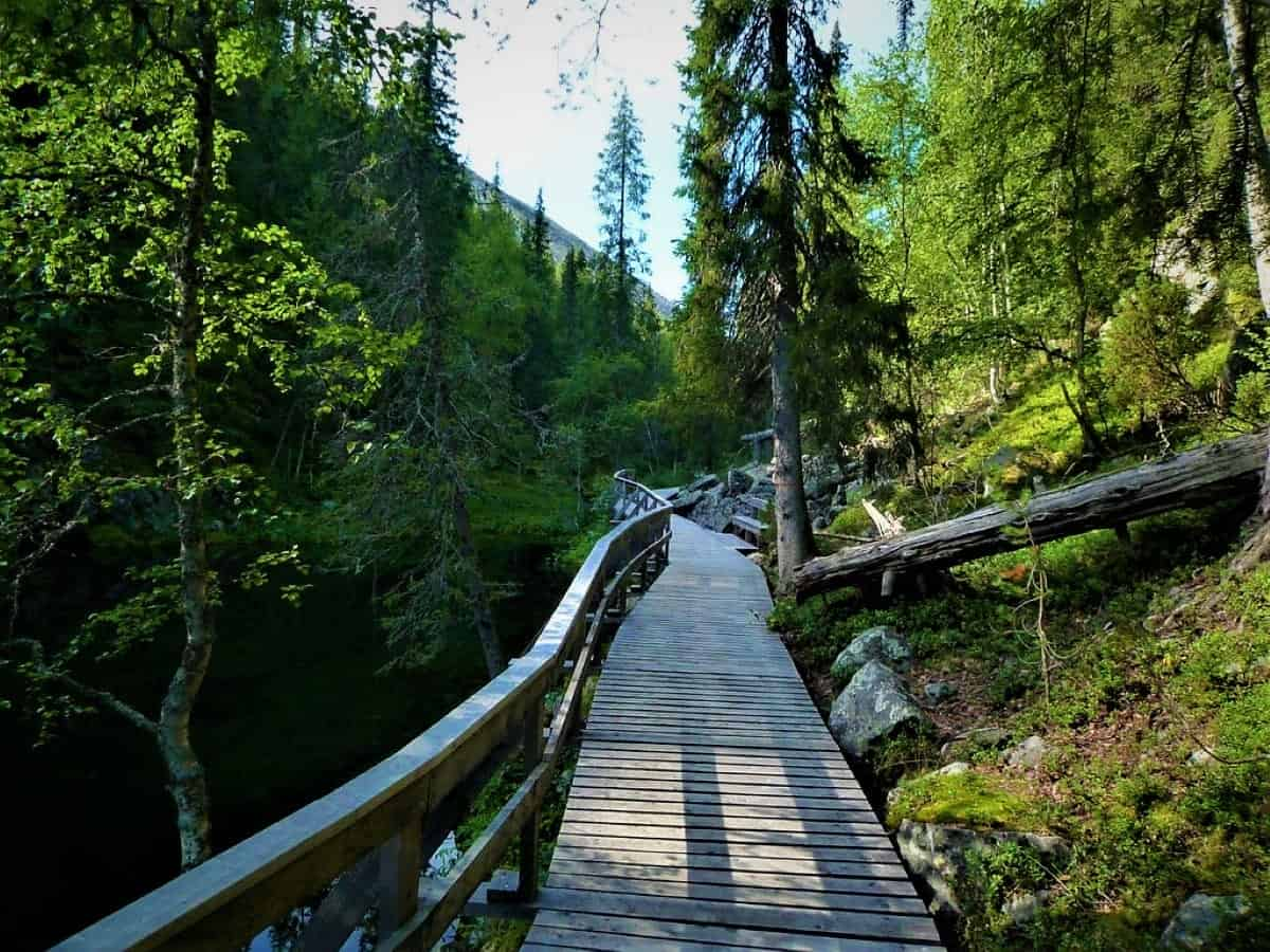 Things to do in Rovaniemi: A hiking route going to Lampivaara Amethst mine Pyhä-Luosto National Park, Lapland, Finland