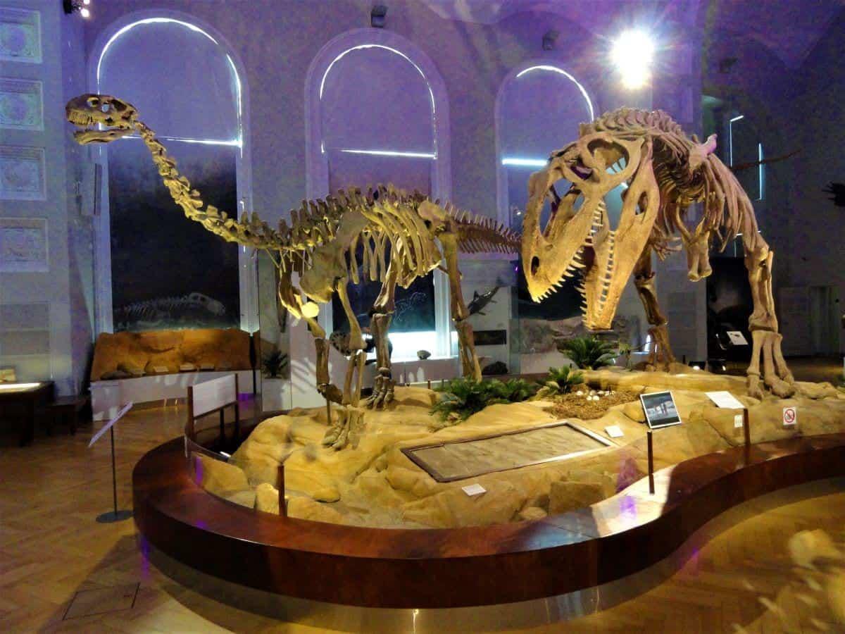 Dinosaur room Finnish Museum of Natural History