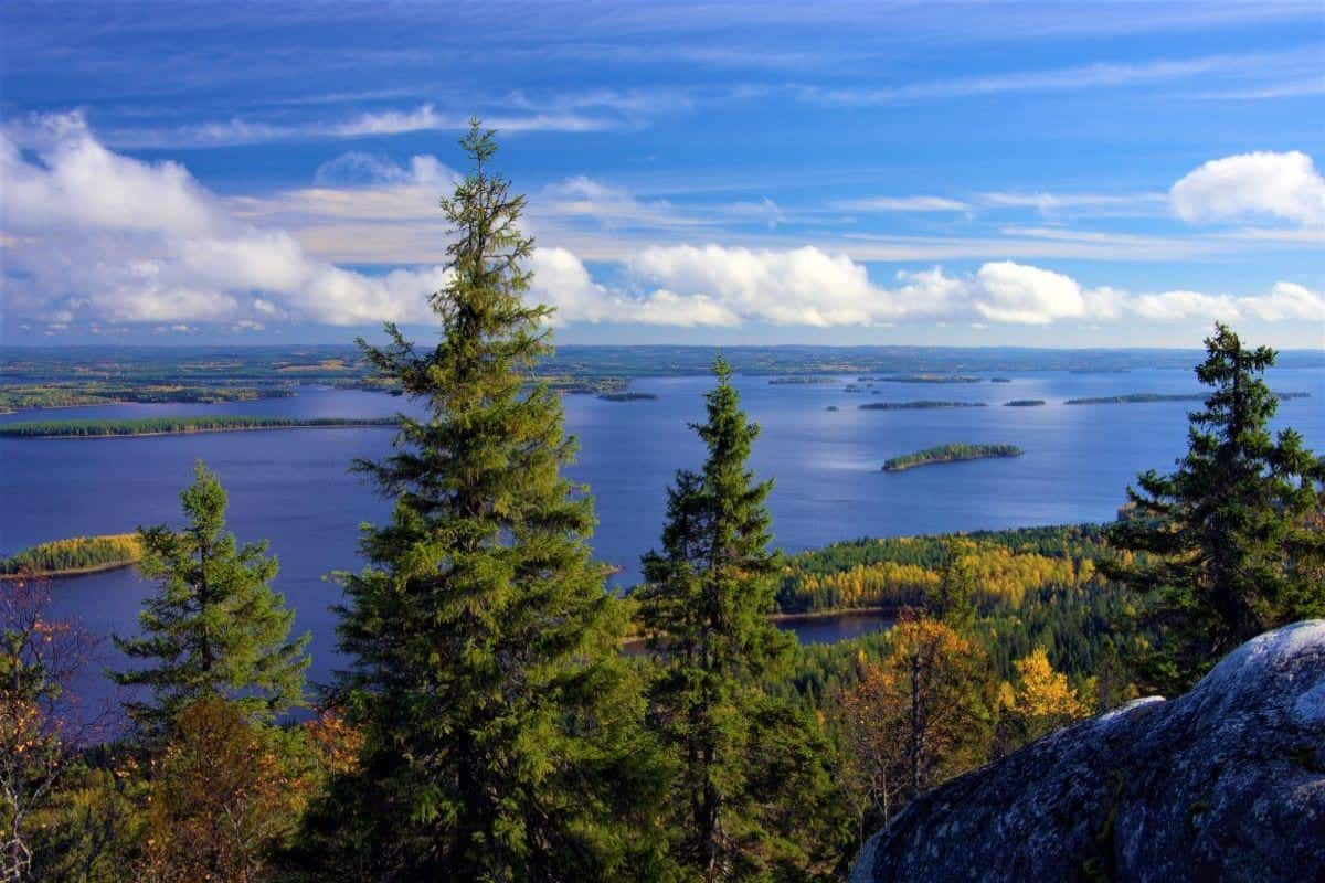 Best hikes in Finland: Koli National Park North Karelia Finland