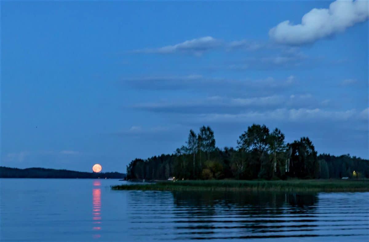 Lakes in Finland: Kallavesi Lake