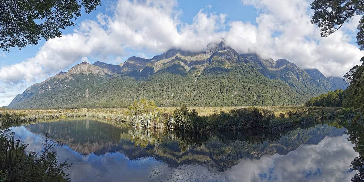 Spending a day in the Fiordland National Park