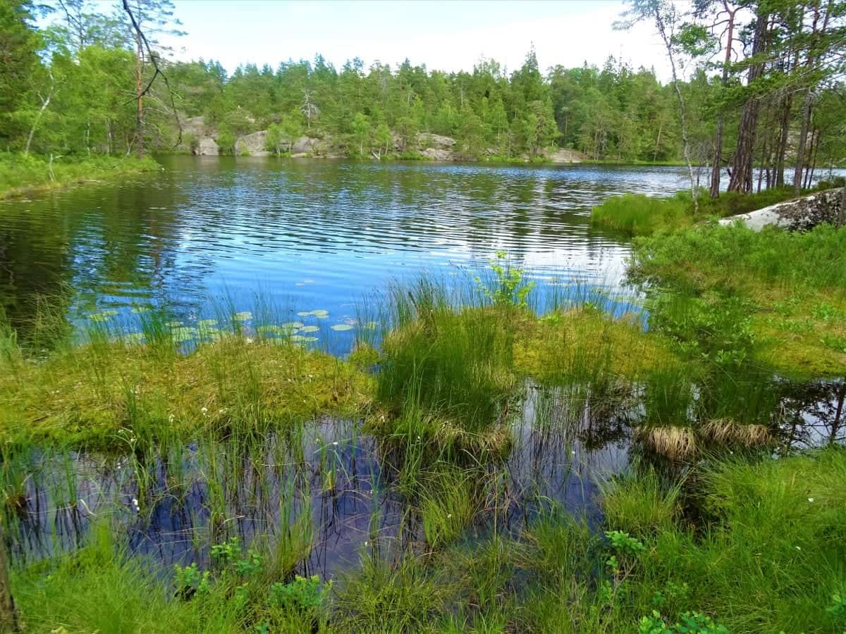 Stone Lake in Tyresta National Park Sweden