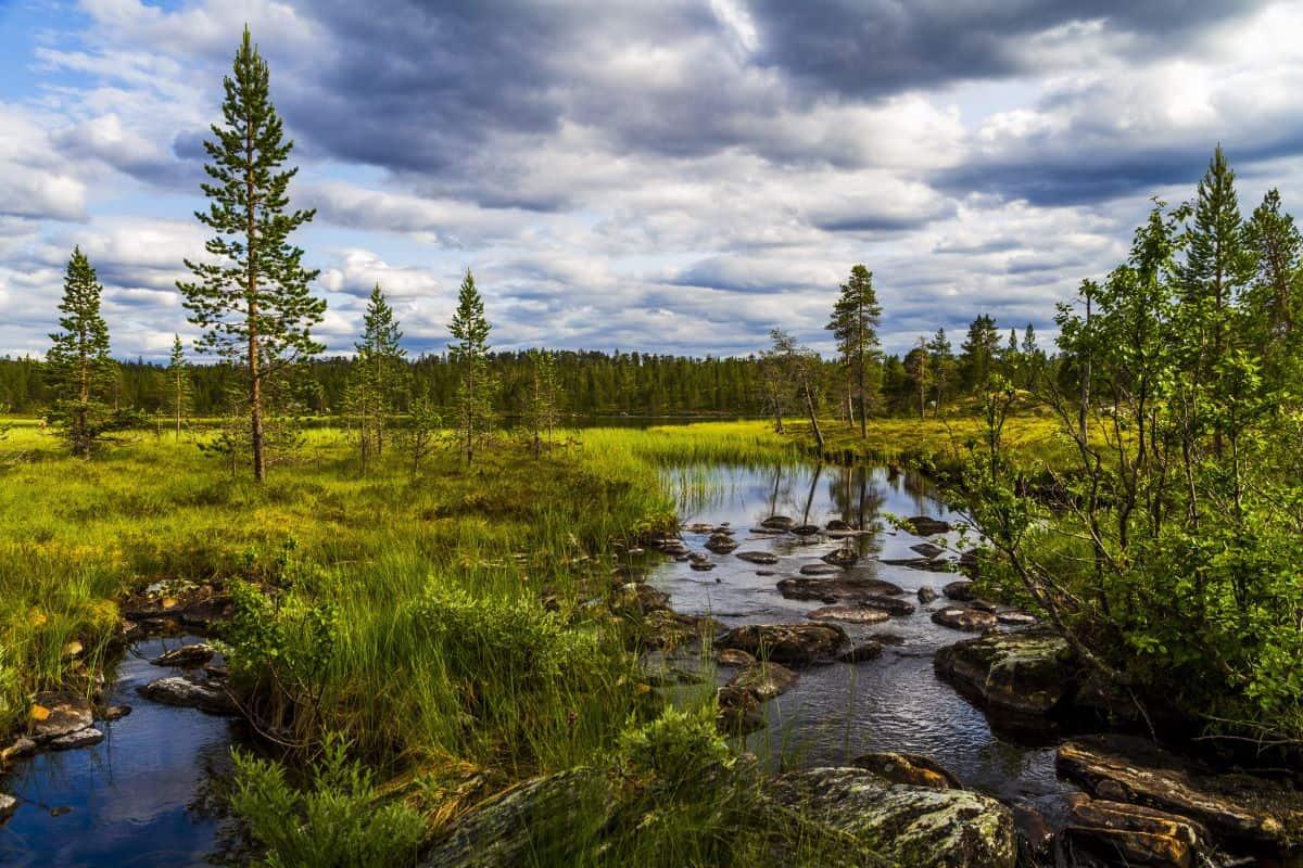Femundsmarka National Park