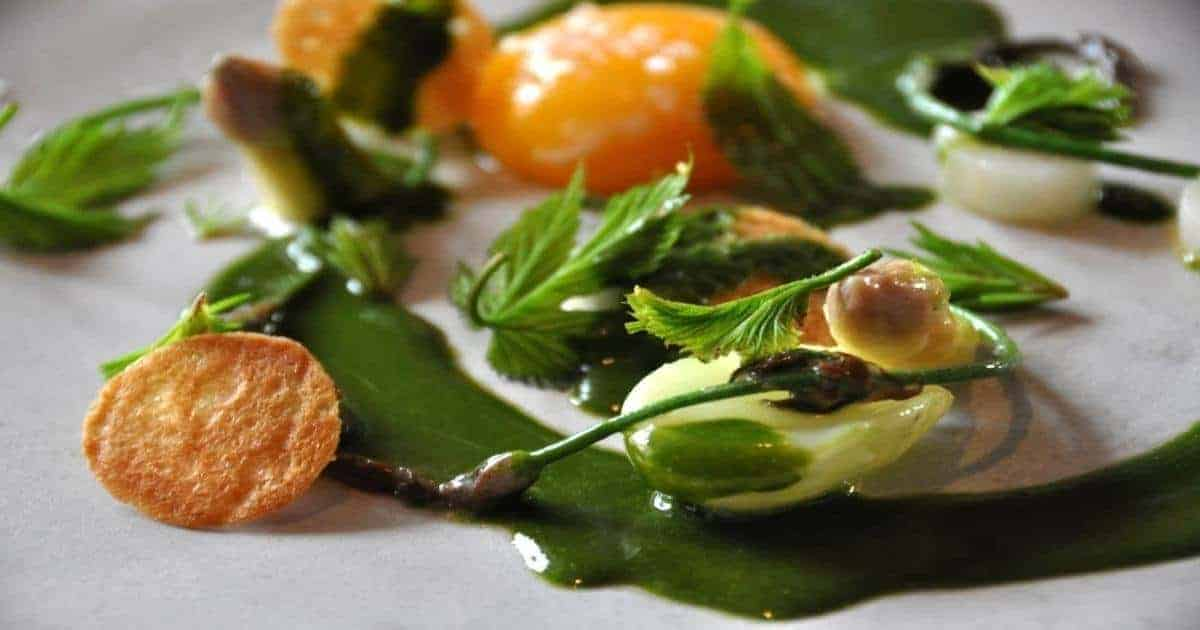 A dish from the restaurant Noma in Copenhagen featured