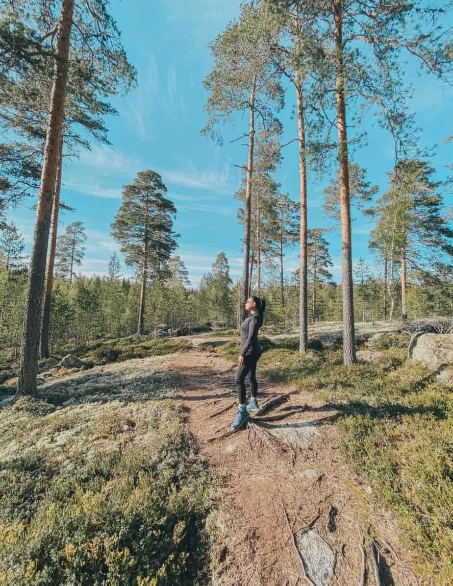 Enjoying Finland summer in the middle of the wilderness.